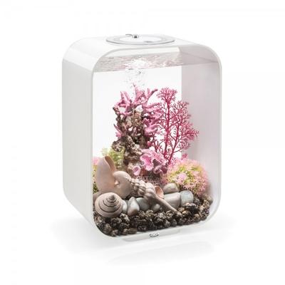 biOrb LIFE 15L with MCR LED White | biOrb Aquariums