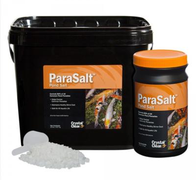 Crystal Clear ParaSalt   Crystal Clear
