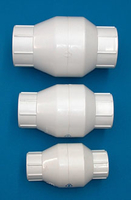 Image Check Valve (spring) FPT