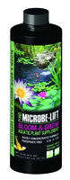 Image Microbe-Lift EcoLab Bloom and Grow