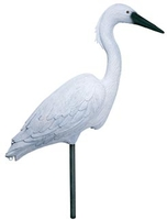 Image Flambeau Egret
