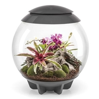 Image biOrbAIR 60 LED Terrarium - 16 gallon Grey 46148
