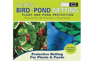 Image DeWitt Bird/Pond Netting