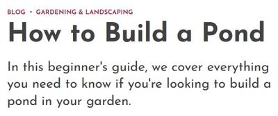 Image How to Build a Pond